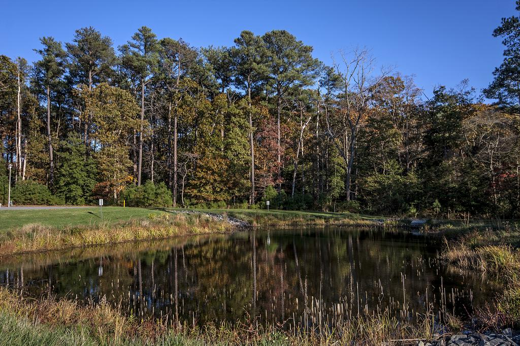 Pond | Hawkseye, Lewes, Delaware HOA Home Owners Association